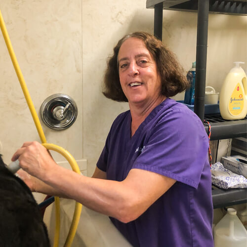 Lori, our animal caretaker at Willow Grove Animal Clinic